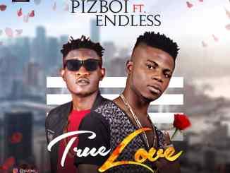 PIZBOI ft EndLess - True Love