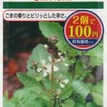【マジでウマイ!】100均の種で、古代ローマの惚れ薬?! 『ルッコラ』の育て方・栽培方法