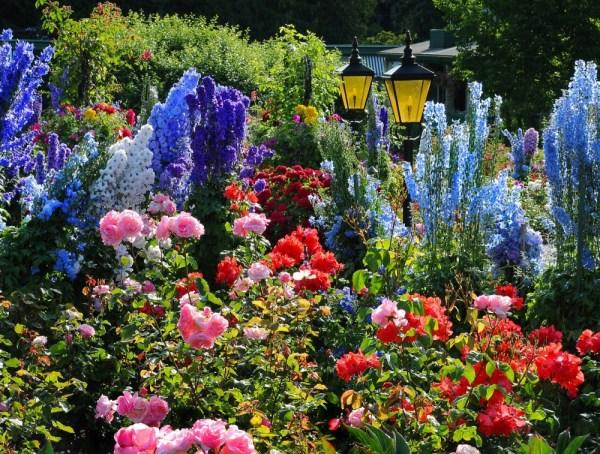 rose garden The Butchart Gardens – Victoria, Canada – Rose Garden