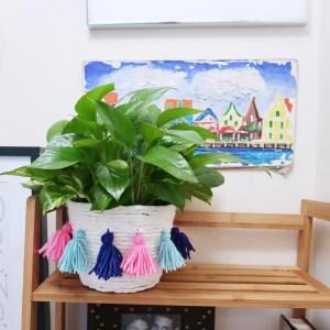 DIY Tassel Fringe Planter