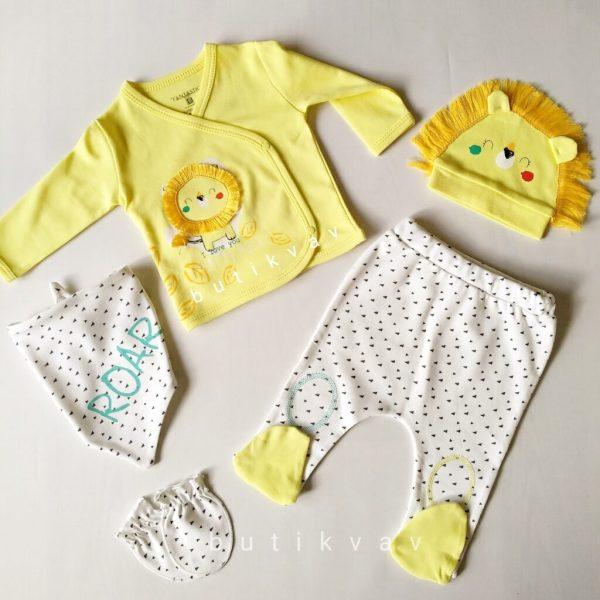 erkek bebek minik aslan 5 li hastane cikisi 01 scaled - Erkek Bebek Minik Aslan 5'li Hastane Çıkışı