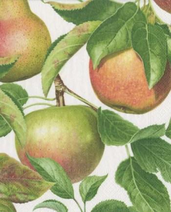 Caspari Servetter Apple Orchard 16.5x16.5 cm