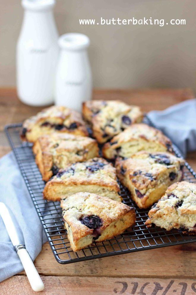Blueberry and Lemon Buttermilk Scones   Butter Baking