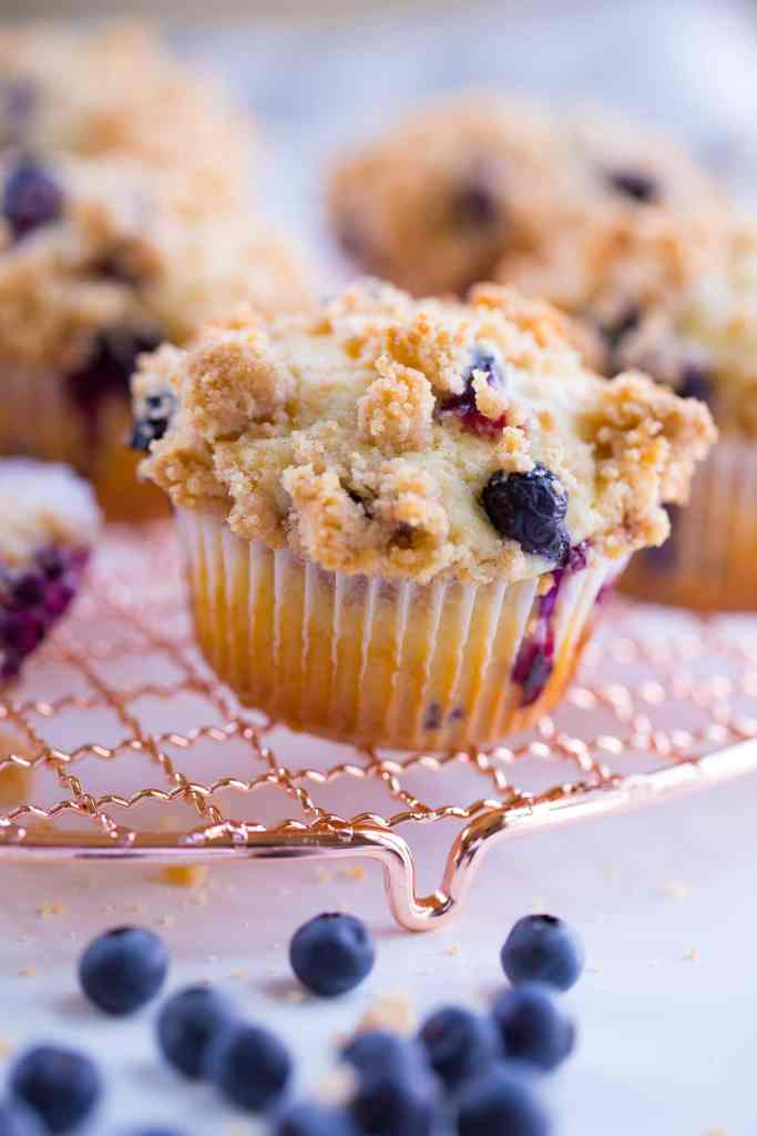 one blueberry muffin on gold wire rack with blueberries