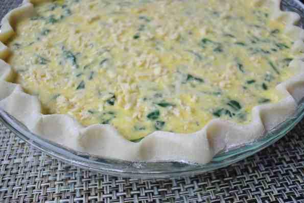 Quick 12 Egg Quiche