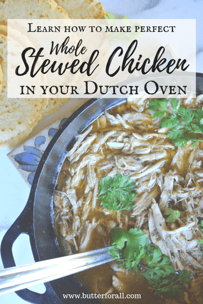 The perfect way to stew a whole chicken for the most succulent meat and broth.