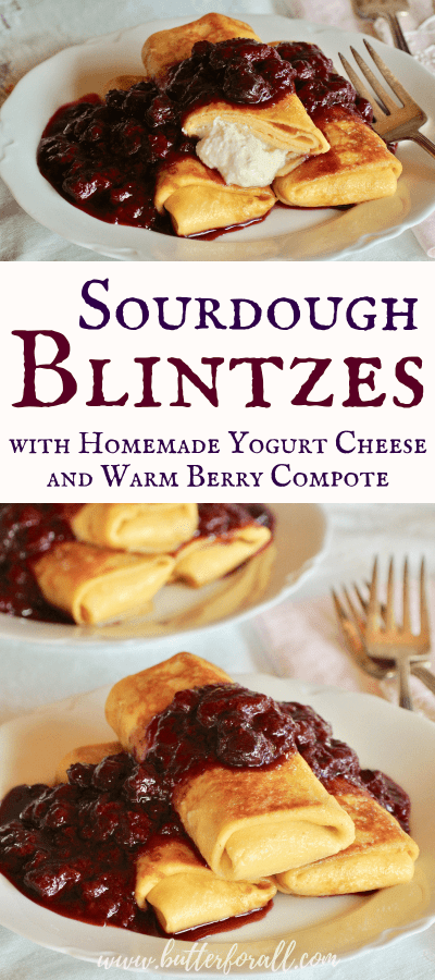 These soft and chewy sourdough blintzes are filled with homemade honey sweetened yogurt cheese, fried to crispy perfection in real butter and then topped with apple sweetened warm berry compote. This is the perfect romantic brunch! #realfood #sourdough #crepes #valentinesday #breakfast #brunch #probiotic #fermented #wisetraditions #nourishingtraditions