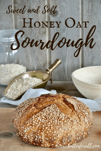 This sweet and soft Honey Oat Sourdough is hearty and delicious. This real sourdough bread makes great chewy toast or filling French toast! #realfood #fermented #rolledoats #heirloomgrains #honeysweetened #organic #nourishing #wisetraditions #nourishingtraditions