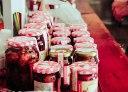 Fruit jam screw feeder pump