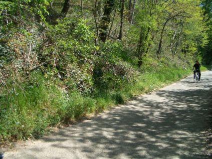 fietstocht en rozen maken 043