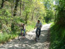 fietstocht en rozen maken 045