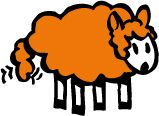 An orange sheep