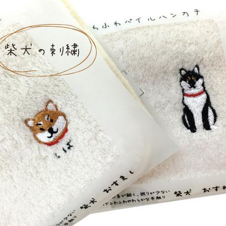 Buyandship X Super Delivery 會員獨享   Buyandship 臺灣 國際代運