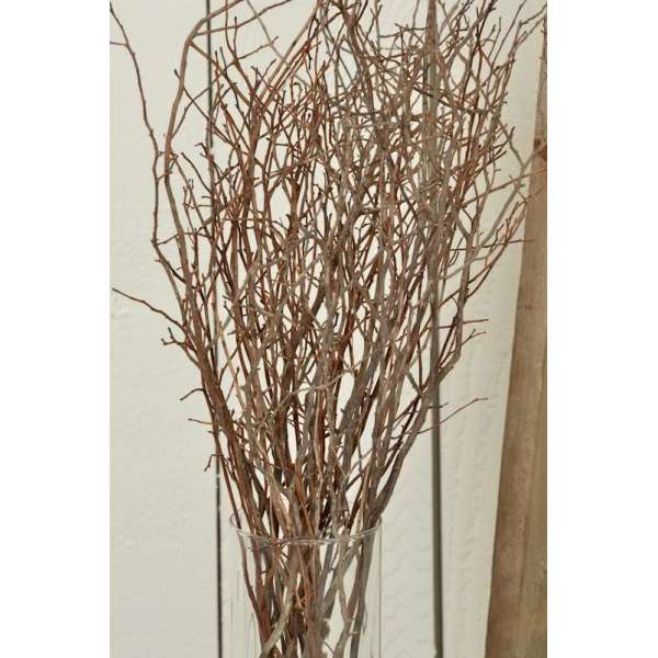 Sweet Huck Branches Natural Huckleberry