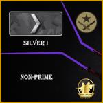 silver 1 account