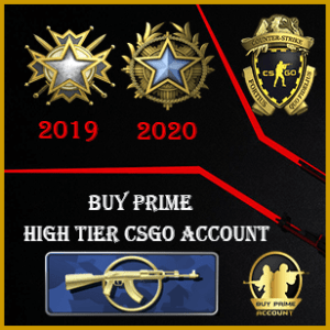 Buy CSGO High Tier Accounts mg1 249wins