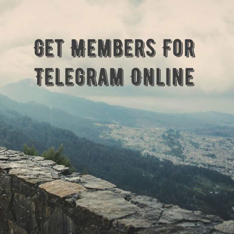 Telegram Members Online - Get Members For Telegram Online