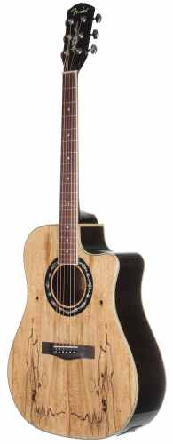 Fender T-Bucket 300CE Cutaway Acoustic-Electric Guitar - Spalted Maple Limited Edition