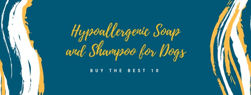 Best Hypoallergenic Soaps and Shampoos For Dogs Review In 2020- A Step By Step Guide 1