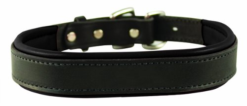 Top 10 Best Leather Dog Collars Review In 2021 – A Step By Step Guide 7