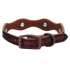 Top 10 Best Leather Dog Collars Review In 2021 – A Step By Step Guide 3