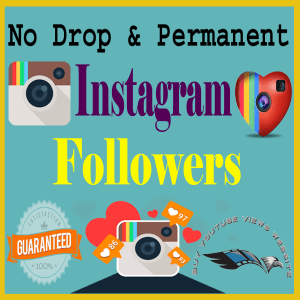 Buy Cheap Instagram Followers
