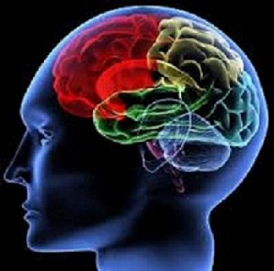 cerveau hypnotisé pensée dominante