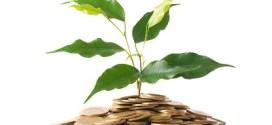 Comment Gérer Vos Premiers Revenus Passifs