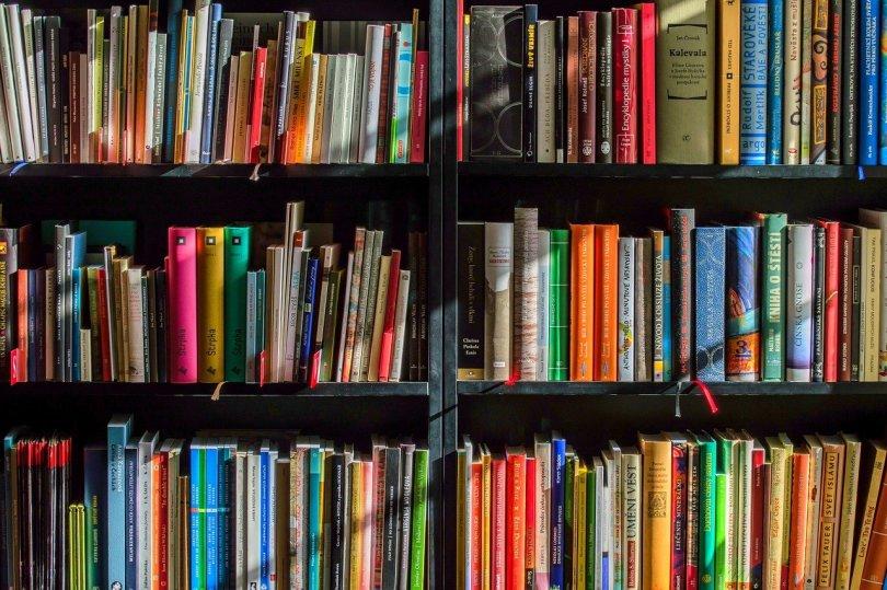 Il est existe des milliers de livre pour devenir riche dans le monde