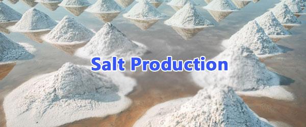 salt production in gujarat