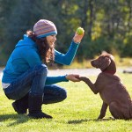 6 Tricks Every Dog Can Teach Its Human
