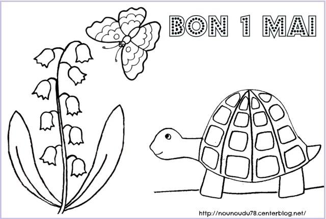 coloriage à dessiner brin muguet