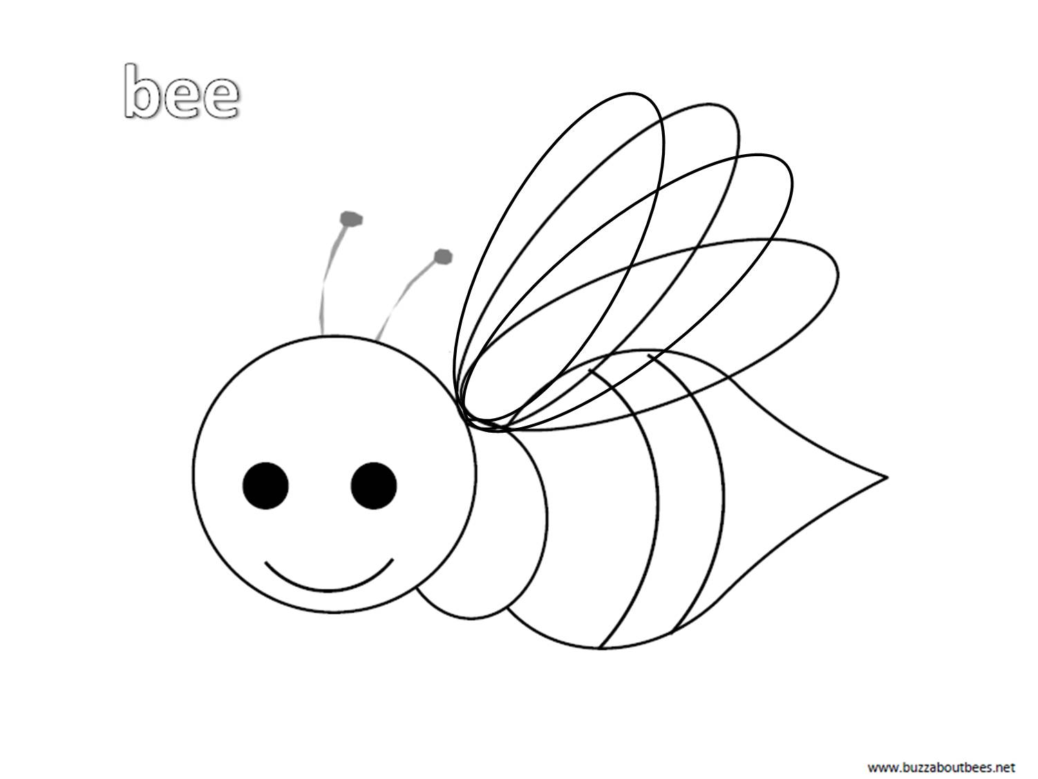 Bee Coloring Pages Educational Activity Sheets And