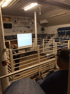 Meeting at an auction market
