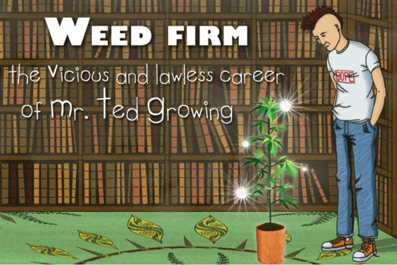 WeedFirm weed-firm-2-800x533