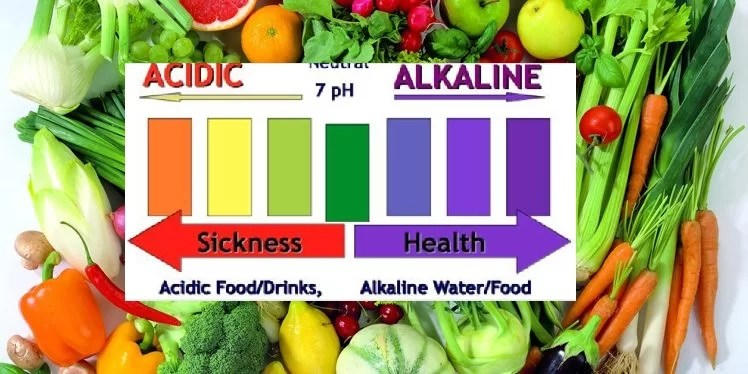 alkaline diet plan tips for beginners
