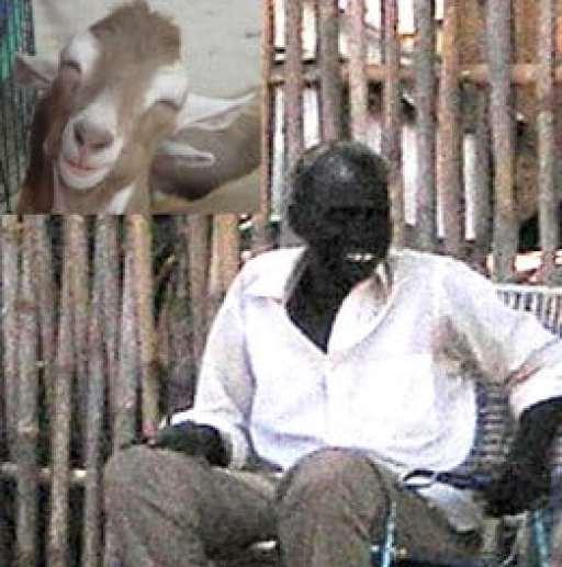 sudan man marries goat incident