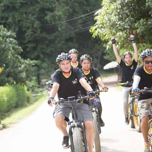 sunny day | Buzzy Bee Bike, Chiang Mai, Thailand