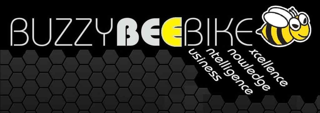 consultancy   Buzzy Bee Bike, Chiang Mai, Thailand