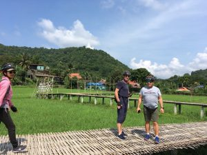 Imagine being on holiday in Thailand | Buzzy Bee Bike, Chiang Mai, Thailand