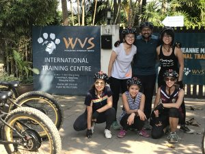 volunteers WVS Care for Dogs | Buzzy Bee Bike, Chiang Mai, Thailand