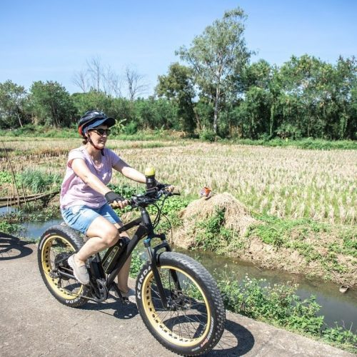 crossing rice fields | Buzzy Bee Bike, Chiang Mai, Thailand