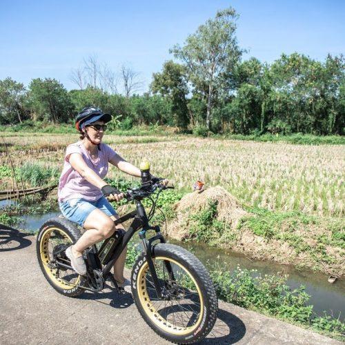 crossing rice fields | Buzzy Bee Bike, Chiang Mai, Thailand