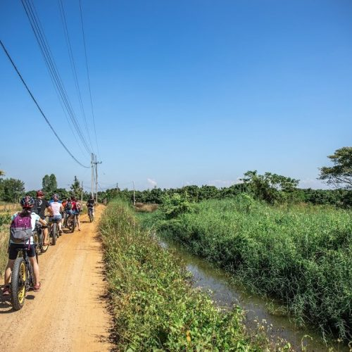 crossing orchards | Buzzy Bee Bike, Chiang Mai, Thailand