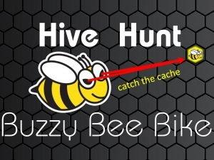 hive hunt | Buzzy Bee Bike, Chiang Mai, Thailand