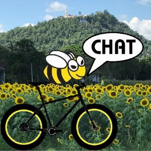 rice harvest | Buzzy Bee Bike, Chiang Mai, Thailand
