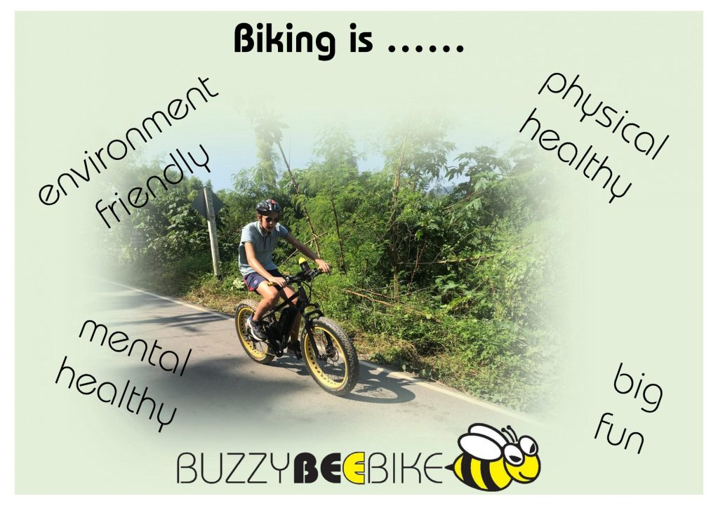 healthy cycling | Buzzy Bee Bike, Chiang Mai, Thailand