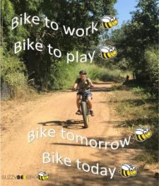 quotes - bike today | Buzzy Bee Bike, Chiang Mai, Thailand