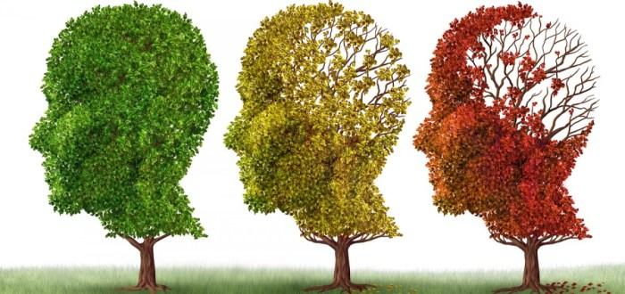 Alzheimer fl