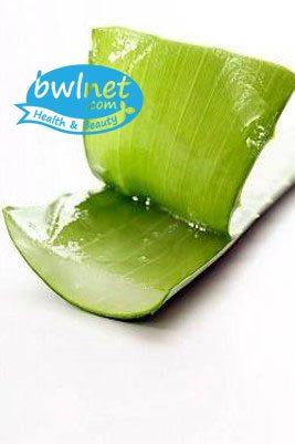 bwlnet-aloe-vera-leaf-extract